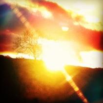thousand-suns